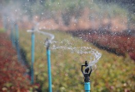 Choose the right sprinkler system for you