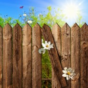 Preventing and treating wood rot on a fence