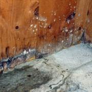 Comment se protéger contre les dégâts d'eau en 3 étapes