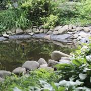10 précieux conseils pour entretenir votre étang de jardin