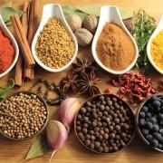Herbes et épices curatives: cannelle, ail, coriandre