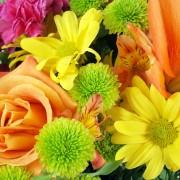 Comment faire sécher des fleurs de la bonne façon