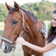 5 avantages inattendus de l'équitation
