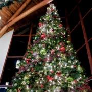 Créez un sapin de Noël unique en son genre avec ces nouvelles idées de conception