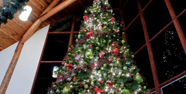 Créez un sapin de Noël unique avec ces nouvelles idées de conception