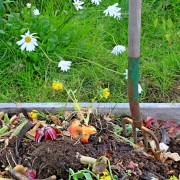 4 étapes pour construire des composteurs pour la cour arrière