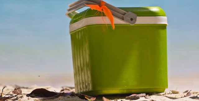 3 conseils utiles pour nettoyer votre glacière