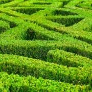 Quelques astuces pour créer votre jardin de broderies