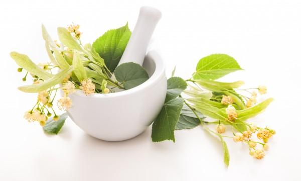 10 rem des naturels avoir dans sa pharmacie trucs - Moucheron plante remede naturel ...