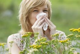 Combattre les allergies avec ces 4 remèdes maison