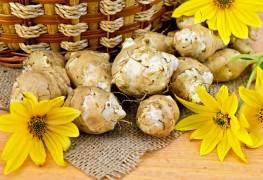 Aliments magiques pour une meilleureglycémie:les artichauts de Jérusalem