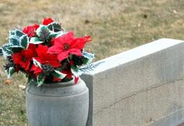 Quelle est l'option la plus écologique pour des funérailles vertes?