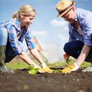 5 bienfaits du jardinage