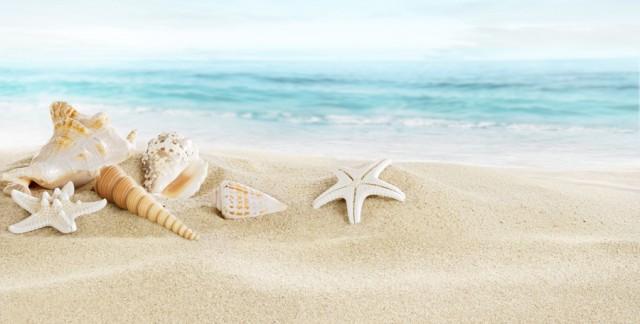 Connaître les obligations de votre agence de voyage