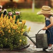 Bien utiliser l'eau pour un jardin écologique