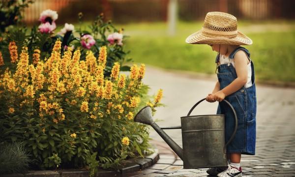Bien utiliser l 39 eau pour un jardin cologique trucs for Utiliser l eau de pluie pour la maison