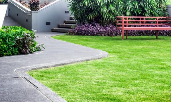 conseils d 39 experts pour avoir une pelouse de r ve trucs pratiques. Black Bedroom Furniture Sets. Home Design Ideas