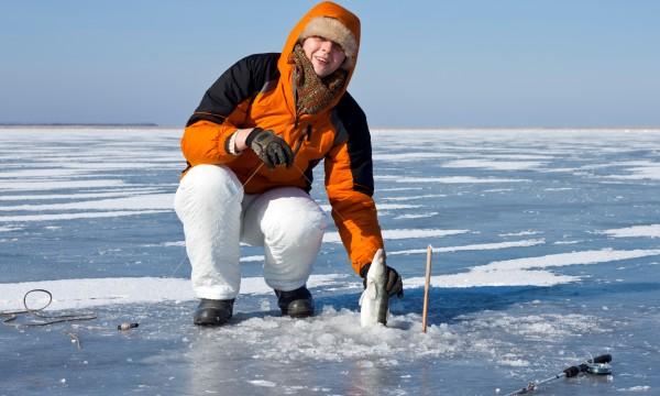 La pêche avec bogomaz