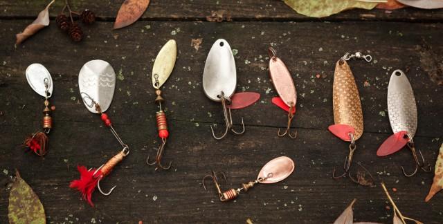 Les meilleurs appâts pour la pêche en eau douce