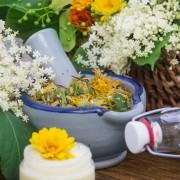 Contrer la fatigue par les plantes : 9 précautions importantes