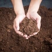 Quel type de sol pour votre jardin?