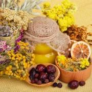 Phytothérapie : 4 principes de base pour bien identifier les plantes