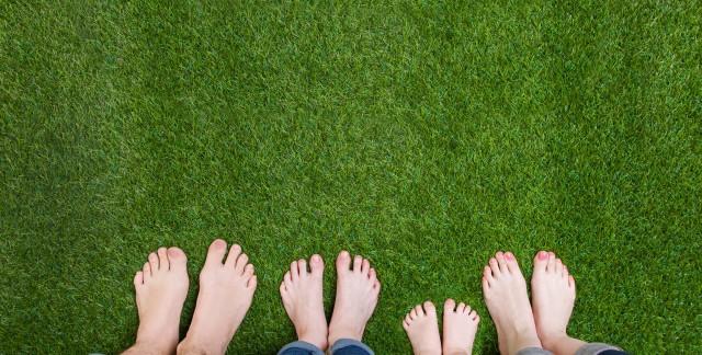 Le guide ultime pour l'entretien d'une pelouse de rêve