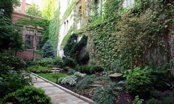 Les 5 meilleurs endroits o planter des foug res dans - Ou planter la rhubarbe dans le jardin ...