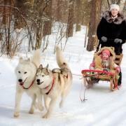 6 activités hivernales que votre famille va adorer