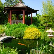 Créer votre propre étang de jardin
