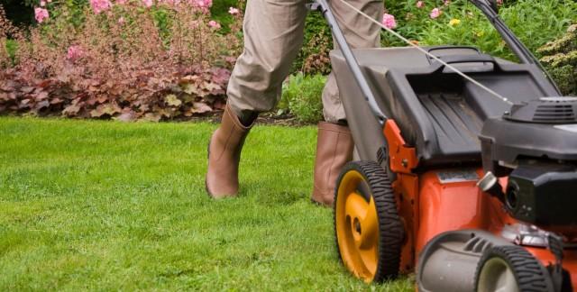 4 astuces ingénieuses pour une belle pelouse