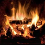 Comment bien choisir son bois de chauffage