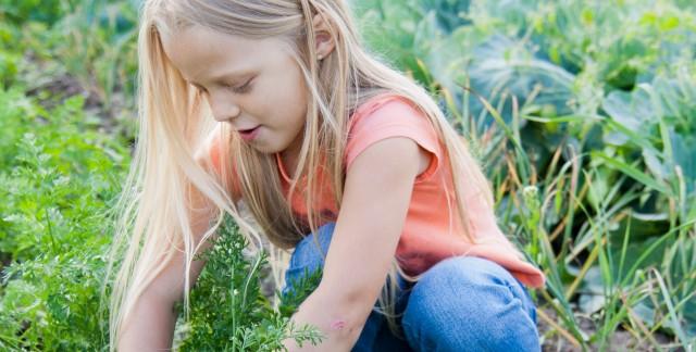 7 façons de faire sortir les enfants dans le jardin