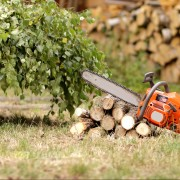 5 conseils d'entretien pour les outils de jardinélectriques