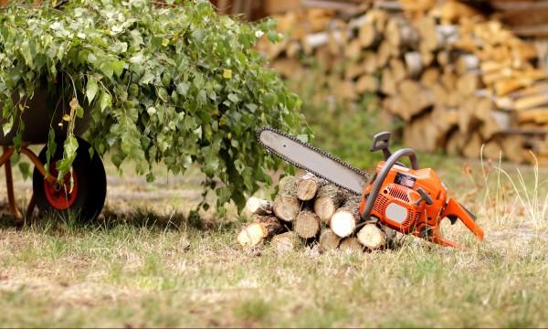 5 conseils d 39 entretien pour les outils de jardin for Conseil entretien jardin