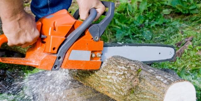 Choisir les bons outils de coupe et les sciesde base