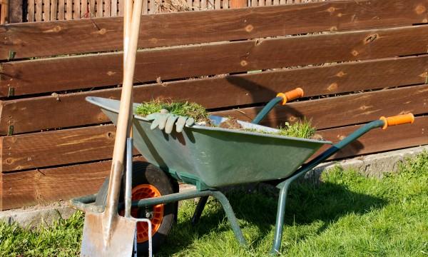 8 id es pour lutter contre la pollution gr ce votre jardin trucs pratiques. Black Bedroom Furniture Sets. Home Design Ideas