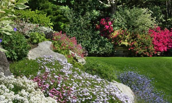 Comment réussir votre jardin de rocaille   Trucs pratiques