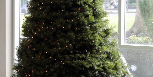Arbre de Noël naturel ou artificiel ? Avantages et désavantages