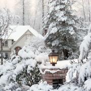 Comment prévoir unjardin pour les hivers froids