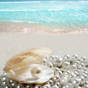 5 critères qui influencent le prix des perles de culture