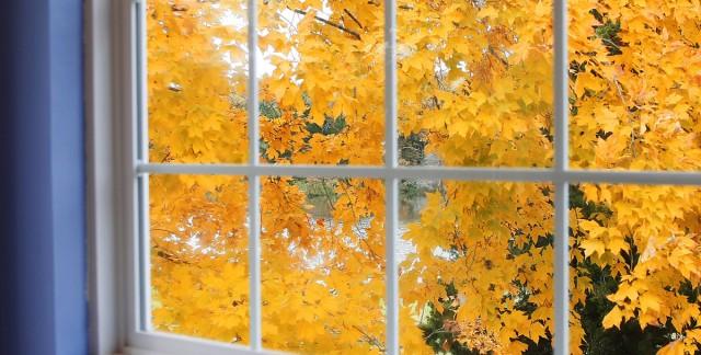 7 superbes tendances de décoration pour l'automne