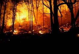 Comment protéger votre maison contre les feux de broussailles