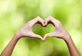 Santé cardiovasculaire: des moyens naturels pour aider à combattre un cholestérol élevé