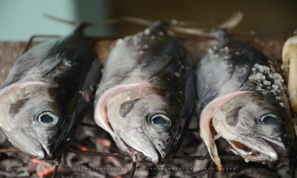Comment cuisiner des poissons fra chement p ch s trucs for Poisson a cuisiner