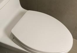 Petit guide pour l'installation d'une nouvelle toilette
