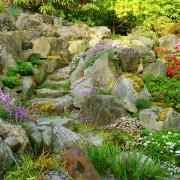 Comment réussir votre jardin de rocaille