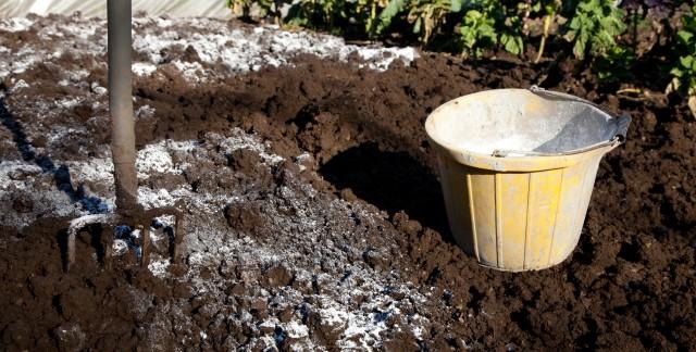 Guide d'utilisation de la chaux dans votre jardin