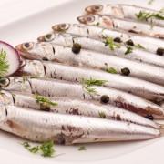 Comme un poisson dans l'eau: 7 recettes pour cuisiner les anchois