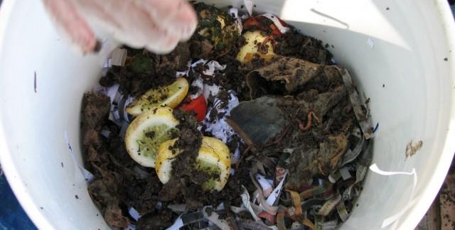 L'achat d'un bac de compostage